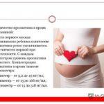 Пролактин у беременных