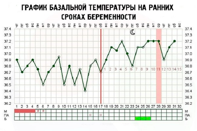 Повышенная базальная температура