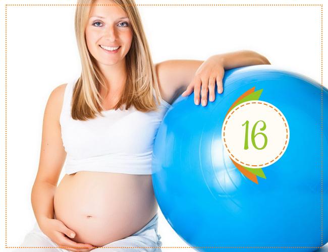16 недель беременности