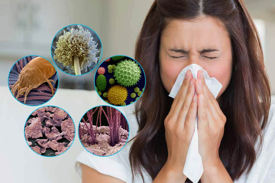 Домашняя пыль
