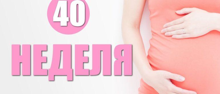 40 недель беременности