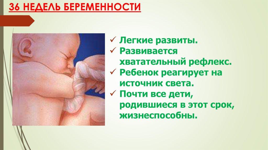 Развитие малыша в 36 недель