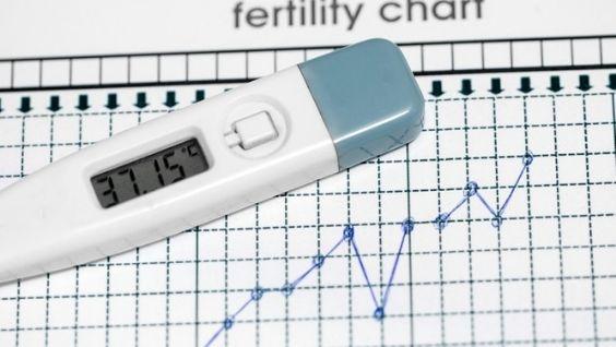 как подсчитать день овуляции для зачатия